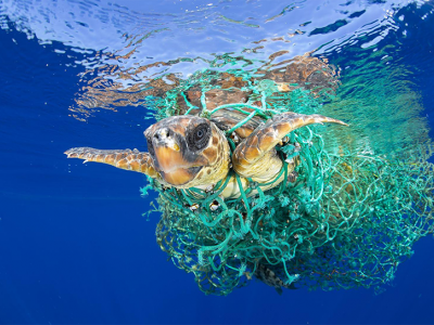 Marine plastic trash uniting nations