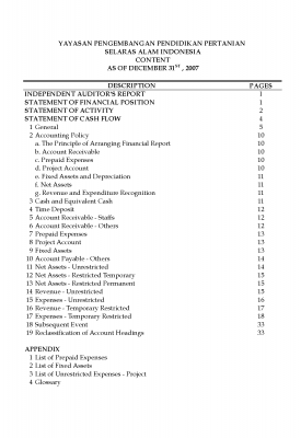 Auditor Report 2007