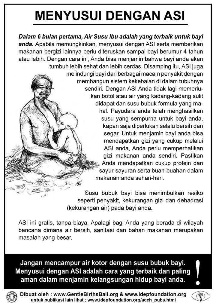 idep foundation disaster management factsheet 02 breastfeeding id