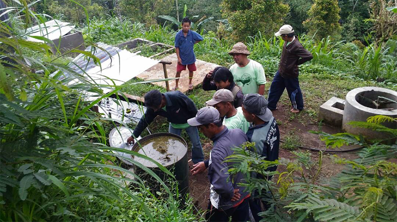Learning Permaculture In The Midst of Mist – Seed Saving & Sustainable Energy Program in Pedawa